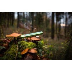 hem-zitronengrass-raeucherstaebchen-incense-agarbatti-duftstaebchen-indien-handgefertigt-moskitoo-india-kult