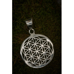 Flower of Life Silver Brass Charm