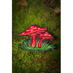 Magic Mashroom Patch