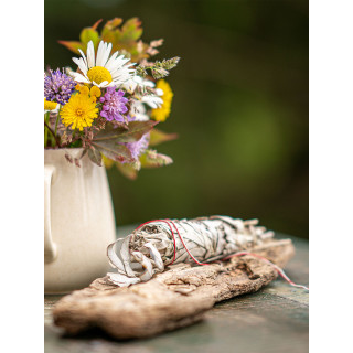Native American Sage White Sage, Salvia Apiana Smudgebundle, Moskitoo india kult